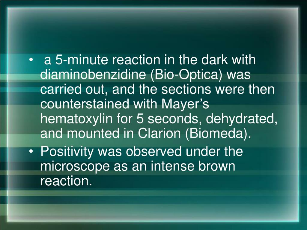 a 5-minute reaction in the dark with diaminobenzidine (Bio-Optica) was carried out, and the sections were then counterstained with Mayer's hematoxylin for 5 seconds, dehydrated, and mounted in Clarion (Biomeda).