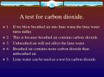 a test for carbon dioxide
