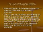the syncretic perception