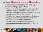animal registration and recording