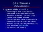 lactamines effets ind sirables
