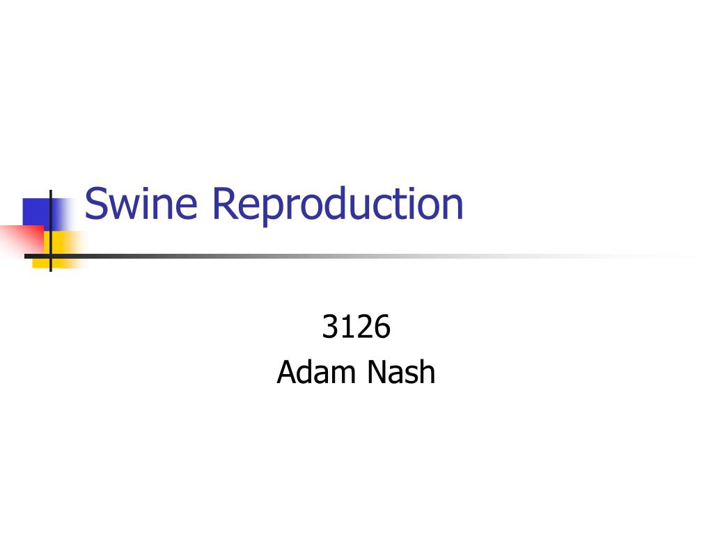 swine reproduction l.