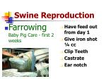 swine reproduction8