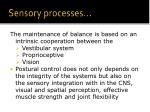 sensory processes