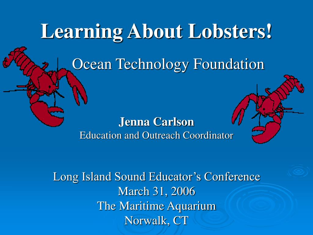learning about lobsters l.