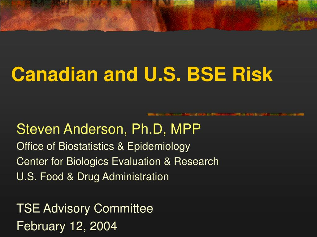 canadian and u s bse risk l.