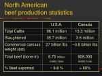 north american beef production statistics