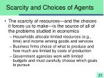scarcity and choices of agents