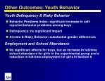 other outcomes youth behavior