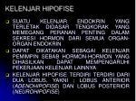 kelenjar hipofise