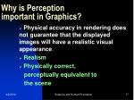 why is perception important in graphics17