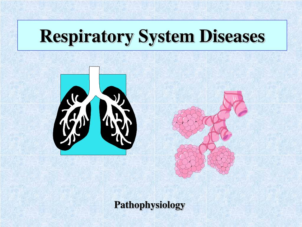 respiratory system diseases l.