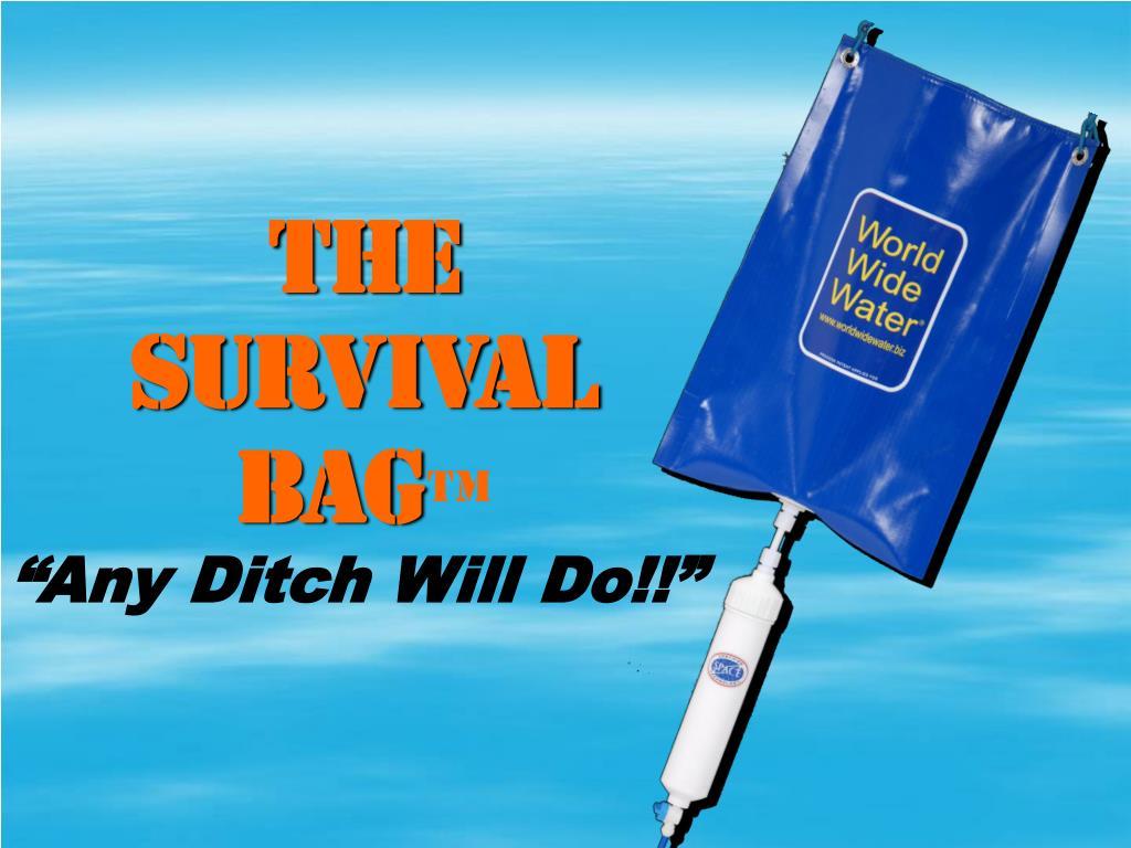 the survival bag l.