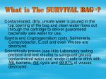 what is the survival bag