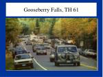 gooseberry falls th 61