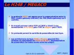 le h248 megaco