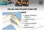 knee pain can you name the point of pain with palpation
