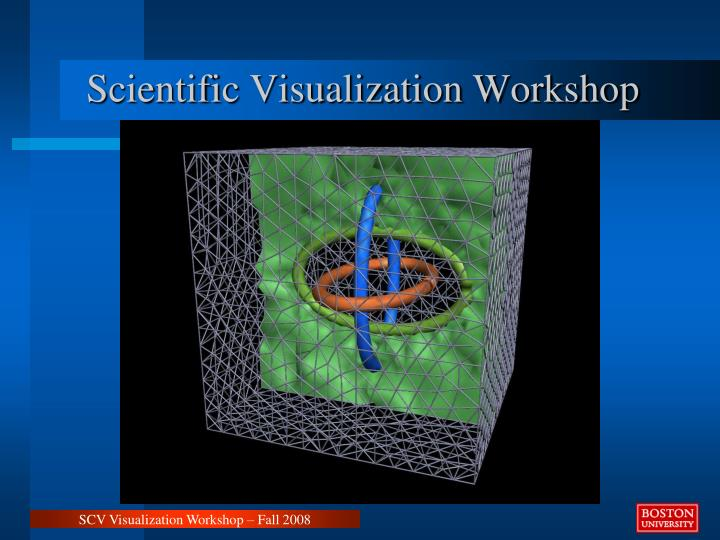 scientific visualization workshop n.