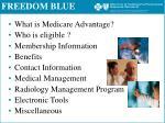 freedom blue1