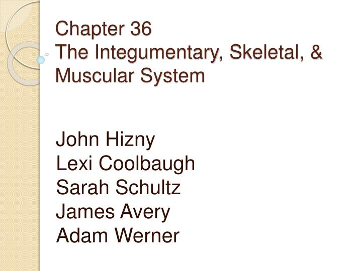 chapter 36 the integumentary skeletal muscular system n.