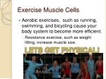 exercise muscle cells