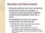 muscles and movements