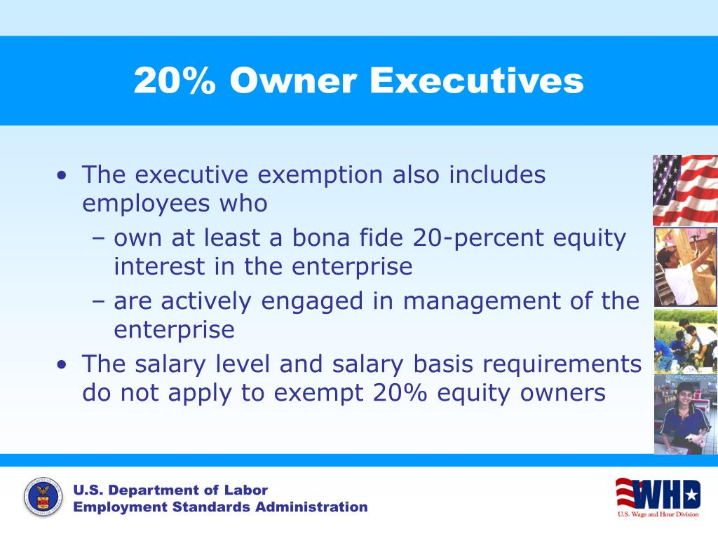 20% Owner Executives