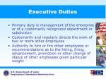 executive duties