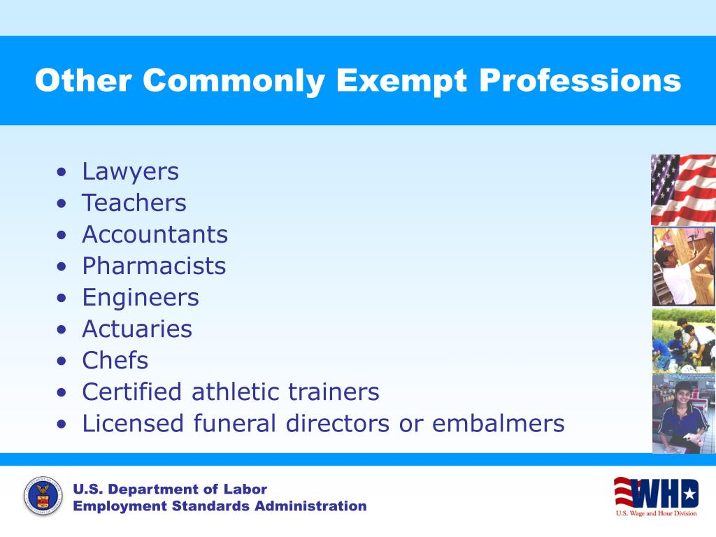 Other Commonly Exempt Professions