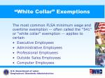 white collar exemptions46