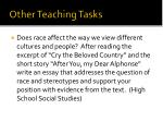 other teaching tasks1