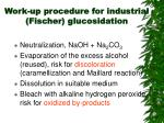 work up procedure for industrial fischer glucosidation