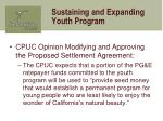 sustaining and expanding youth program