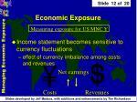 economic exposure12