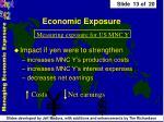 economic exposure13
