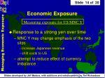 economic exposure14