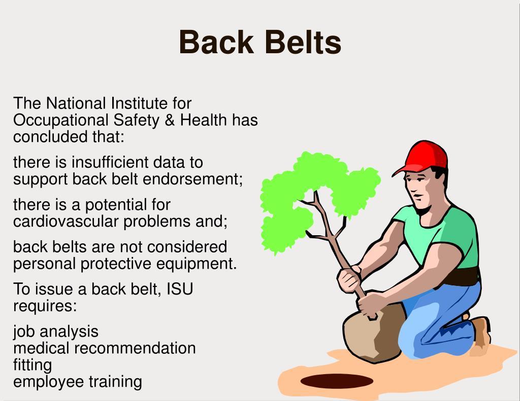 Back Belts