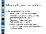 mesures de protection juridique38