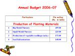 annual budget 2006 07