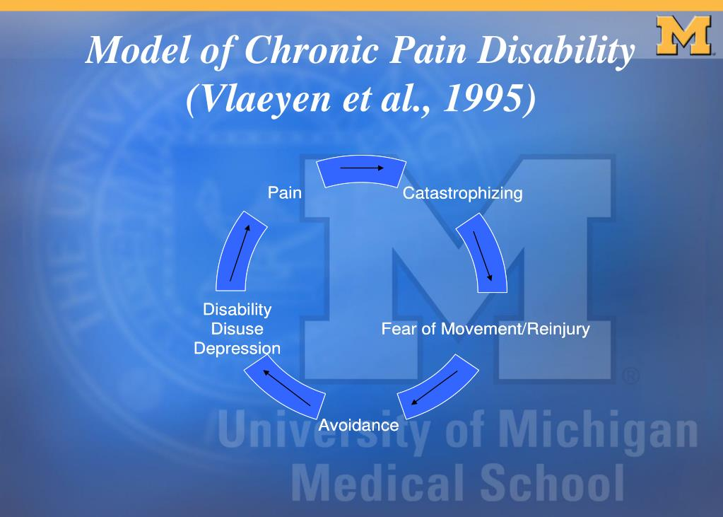 Model of Chronic Pain Disability