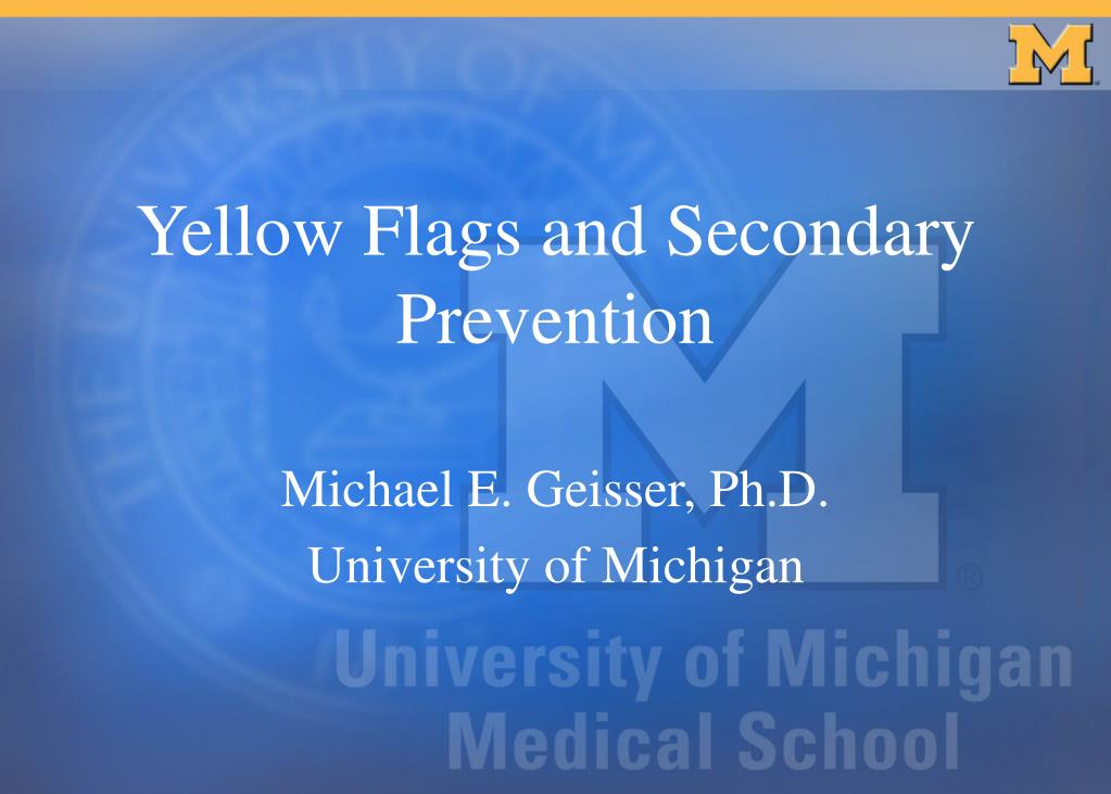 yellow flags and secondary prevention l.