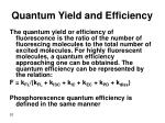 quantum yield and efficiency
