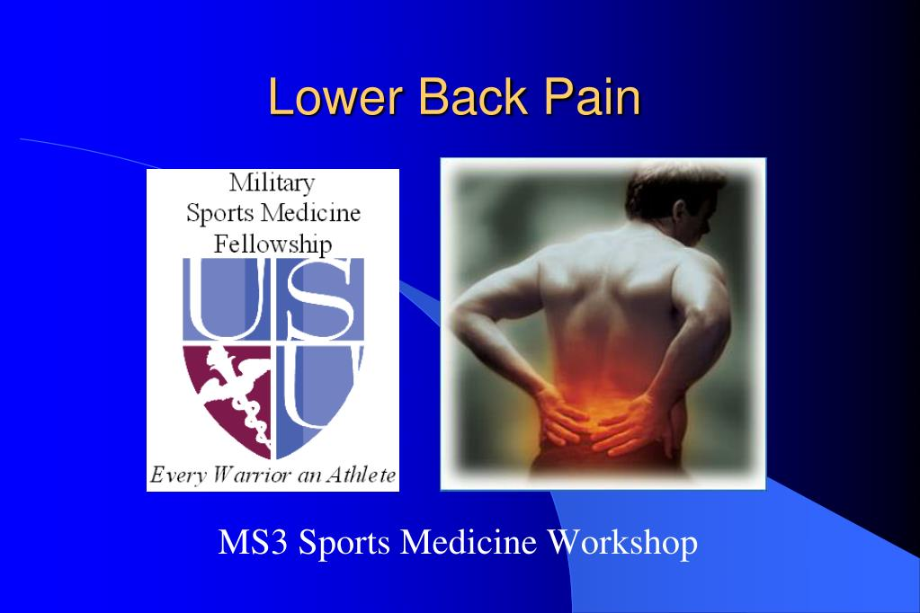 lower back pain l.