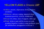 yellow flags in chronic lbp