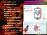 vertebrate adaptations of the cardiovascular system3