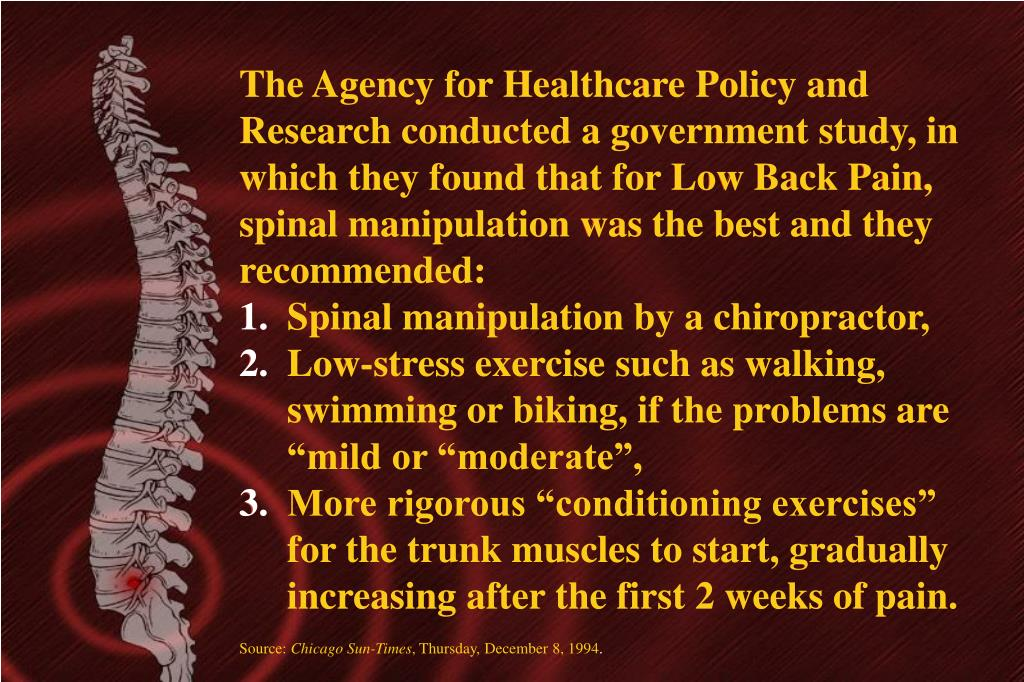 The Agency for Healthcare Policy and Research conducted a government study, in which they found that for Low Back Pain, spinal manipulation was the best and they recommended: