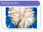 roles in pps