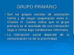 grupo primario