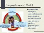 bio psycho social model