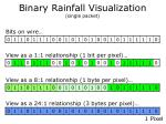 binary rainfall visualization single packet3